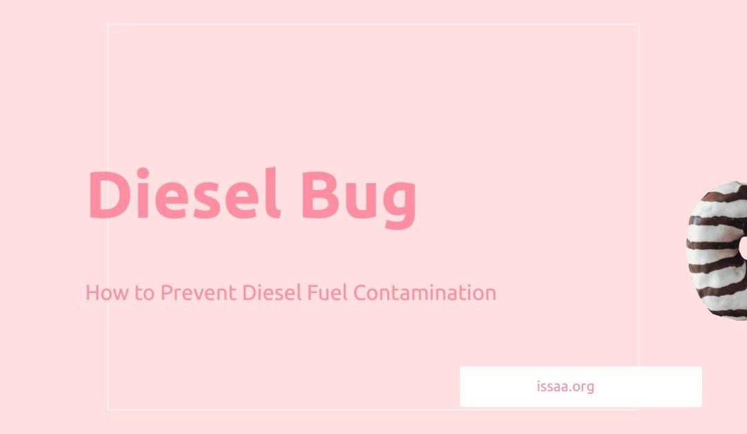 diesel bug is displayed against a light coloured backgorund.