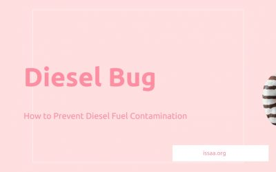 Diesel Bug: How to Prevent Diesel Fuel Contamination